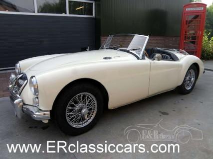 MG 1962 kaufen