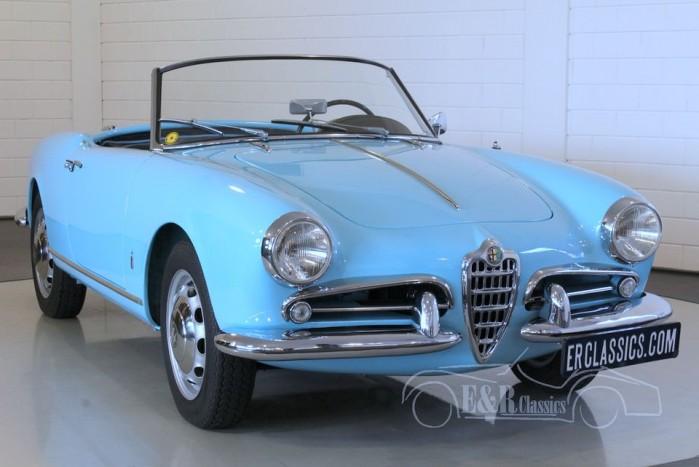 Alfa Romeo Giulietta Spider 1957 kaufen