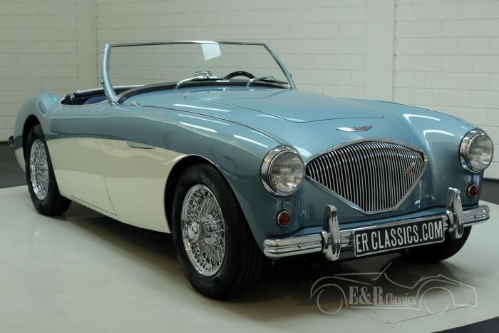 Austin Healey 100-4 BN2 1955  kaufen