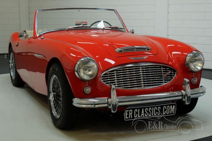 Austin Healey 3000 MK1 1960  kaufen