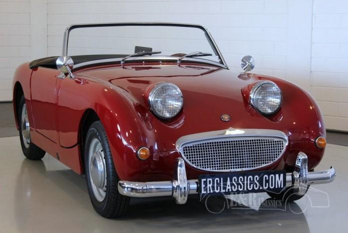 Austin Healey Sprite MKI Frogeye 1959  kaufen