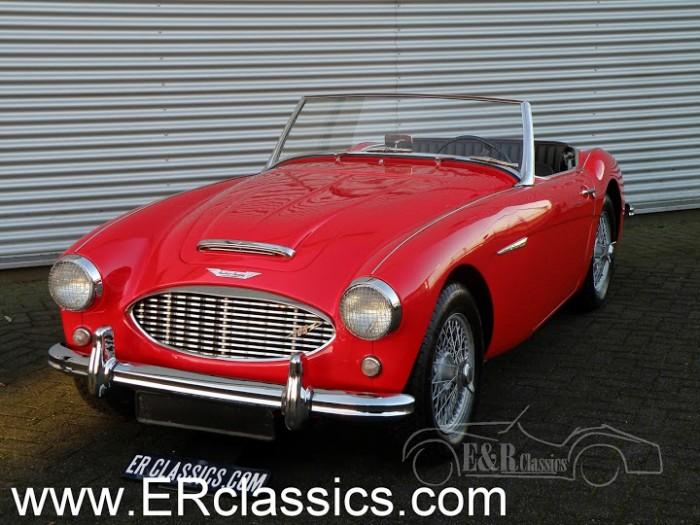 Austin Healey 1957 kaufen