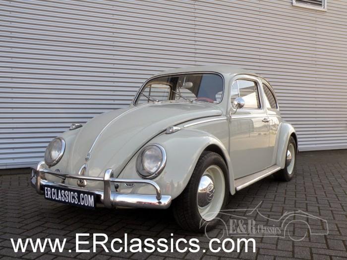 Volkswagen 1960 kaufen