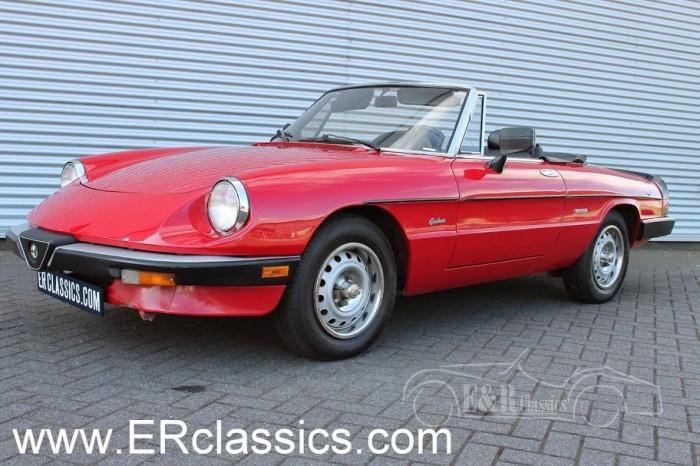 Alfa 1986 kaufen