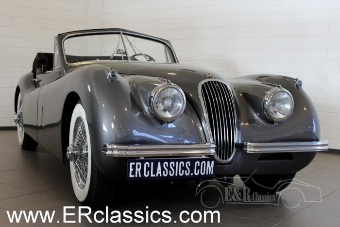Jaguar XK120 Drophead Coupe 1953 kaufen