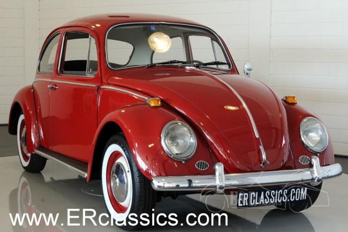Volkswagen Beetle Coupe 1965 kaufen