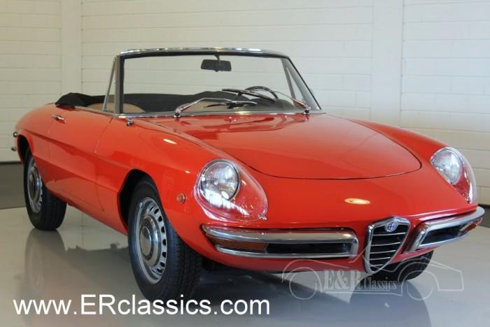 Alfa Romeo Duetto spider 1969 kaufen