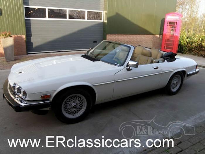 Jaguar 1988 kaufen