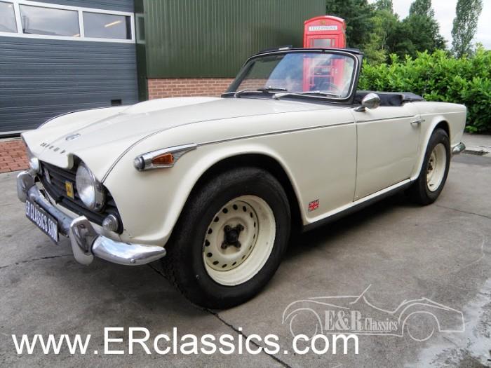 Triumph 1965 kaufen