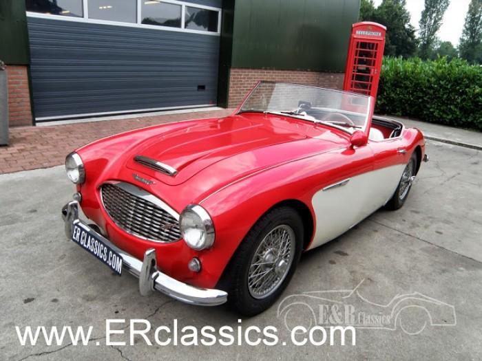 Austin Healey 1958 kaufen