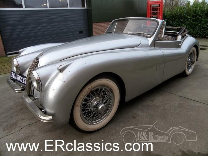 Jaguar 1953 kaufen