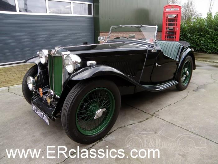 MG 1946 kaufen