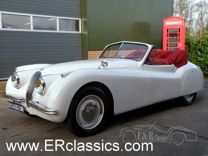 Jaguar 1954 kaufen