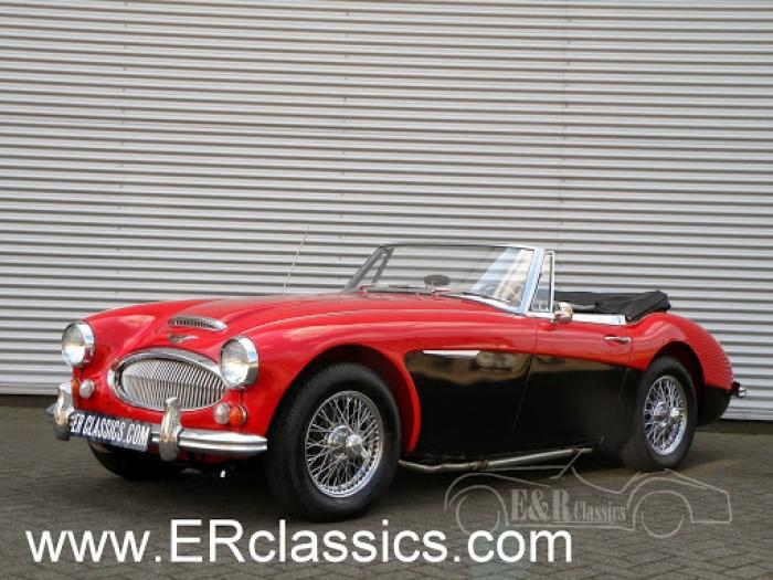 Austin Healey 1967 kaufen