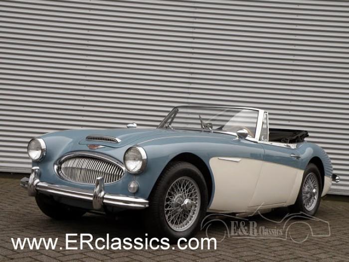 Austin Healey 1965 kaufen