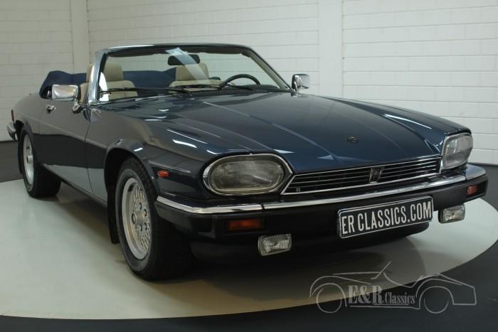 Jaguar XJS Kabriolett 1992  kaufen