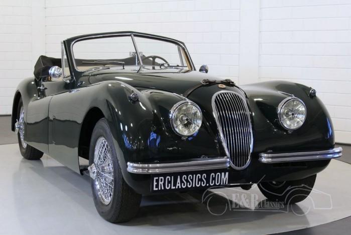 Jaguar XK120 DHC 1953 kaufen
