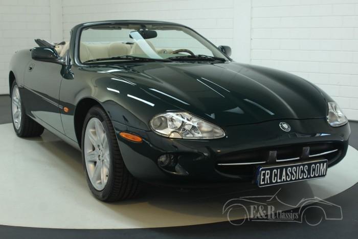 Jaguar XK8 Kabriolett 1998 kaufen