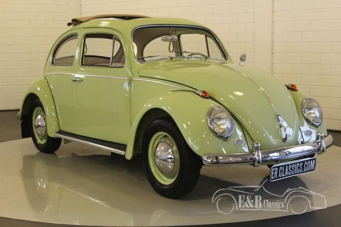 VW Kaefer 1961 Dickholmer Faltdach kaufen