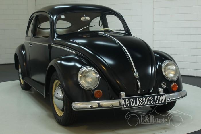 Volkswagen Kaefer 1952  kaufen