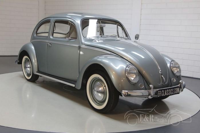 Volkswagen Käfer kaufen