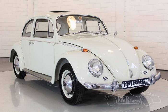 Volkswagen Kaefer 1964 kaufen