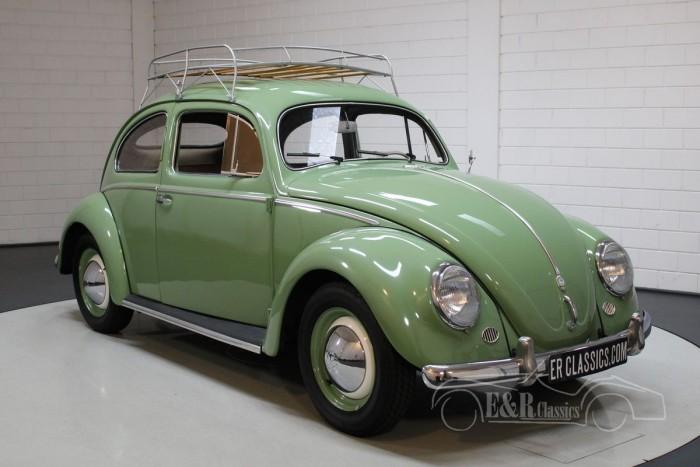 Volkswagen Beetle Oval 1953 kaufen