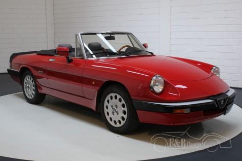 Alfa Romeo Spider 1987  kaufen
