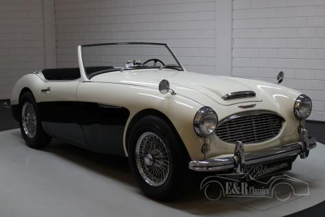 Austin Healey 100-6 1956  kaufen