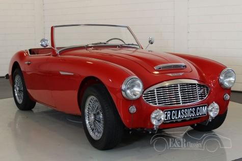Austin Healey 100-6 1957 kaufen