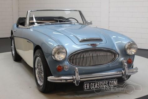 Austin Healey 3000 MKIII phase 2 1966 kaufen