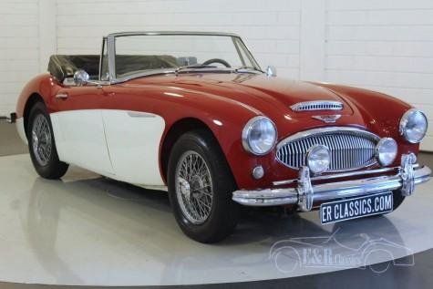 Austin Healey 3000 MK2a 1962  kaufen