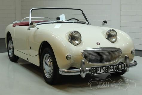 Austin Healey Sprite MK1 1960 kaufen