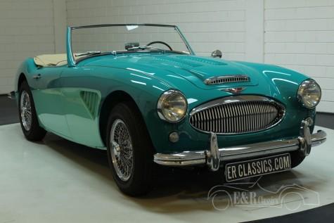 Austin Healey 3000 MK2 1960  kaufen