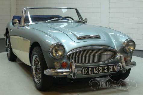 Austin Healey 3000 1966 kaufen