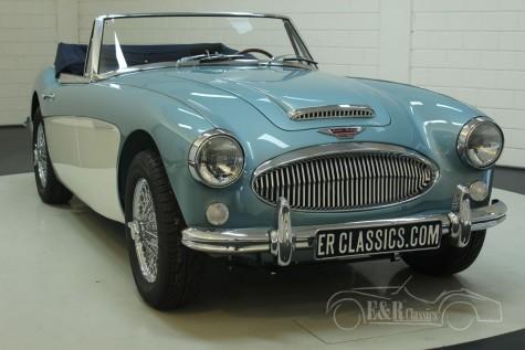 Austin Healey 3000 MK3 BJ8 1965  kaufen