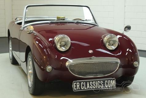 Austin Healey Sprite 1958  kaufen