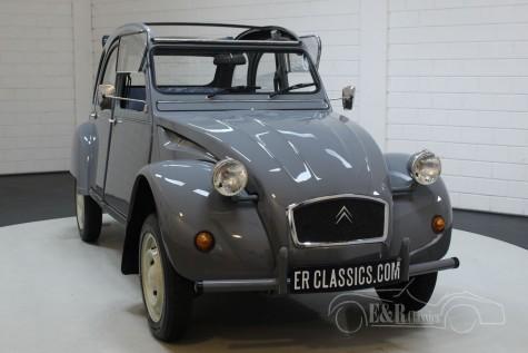 Citroën 2CV Special 1986 kaufen