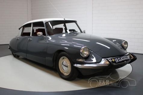Citroën ID19 kaufen