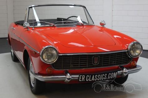 Fiat 1500 Kabriolett 1965 kaufen