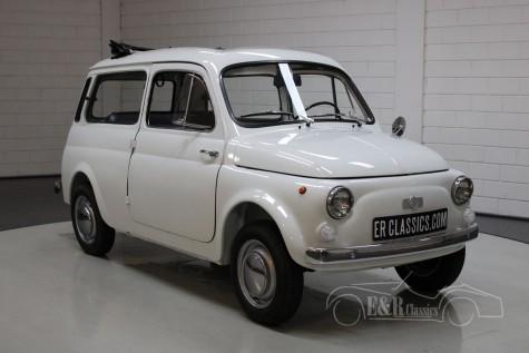 Fiat 500  kaufen