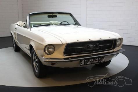 Ford Mustang V8 Kabriolett 1967  kaufen