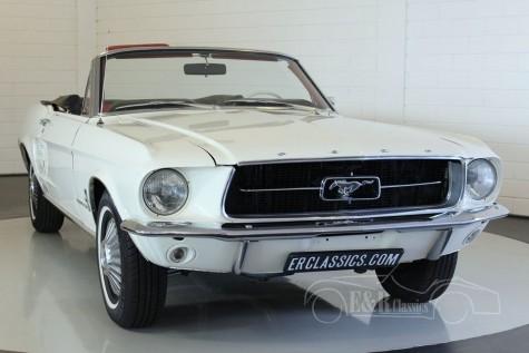 Ford Mustang cabriolet V8 1967 kaufen