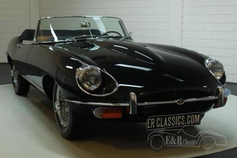 Jaguar E-Type S2 Kabriolett 1969  kaufen