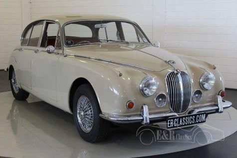 Jaguar MK2 Saloon 1968 kaufen