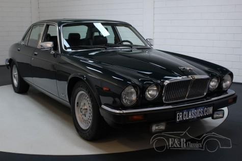 Jaguar XJ12 Series III 1991 kaufen