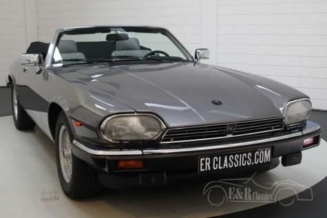 Jaguar XJS Cabriolet V12 1991 kaufen