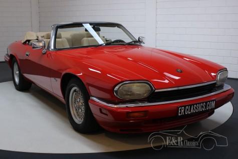 Jaguar XJS 4.0 Cabriolet 1994 kaufen