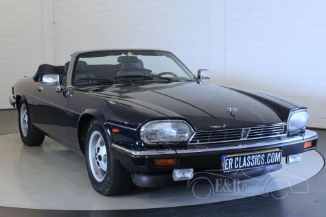 Jaguar XJS Cabriolet 1989 kaufen