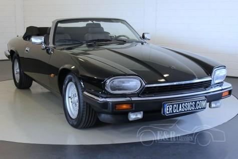 Jaguar XJS cabriolet 4.0 1993 kaufen